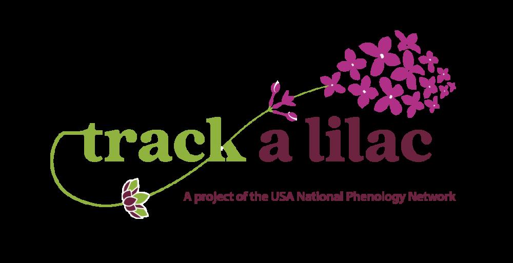 Track a Lilac logo