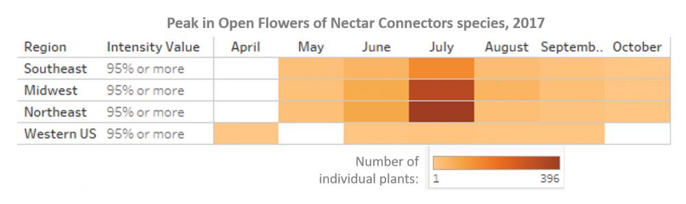 Nectar Connectors peak in flowering