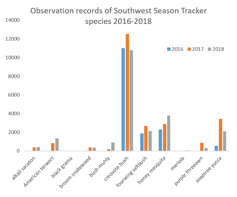 Observation records by species and year 2016-18