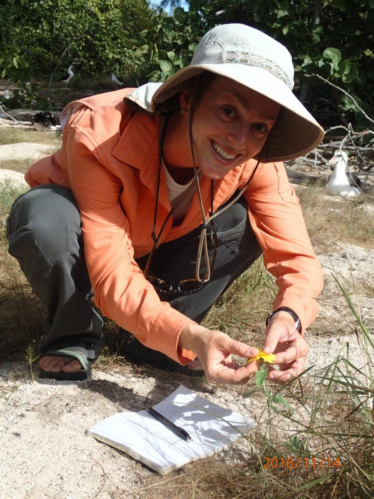 Wieteke Holthuijzen with Verbesina enceliodes, Photo: Ann Humphrey