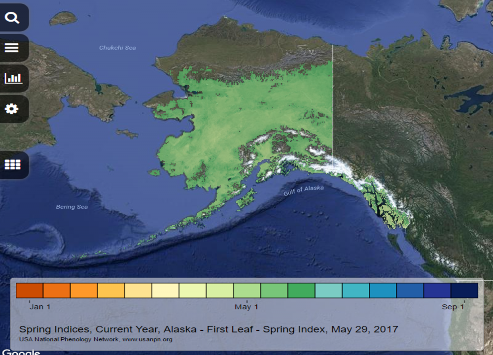 Spring Leaf Index Alaska May 29 2017