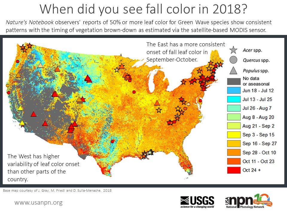 Fall 2018 Seasonal story of leaf color reports