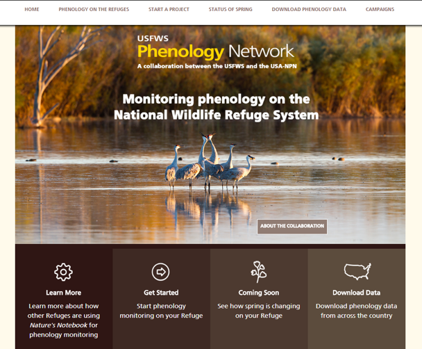 USFWS Phenology Network Website