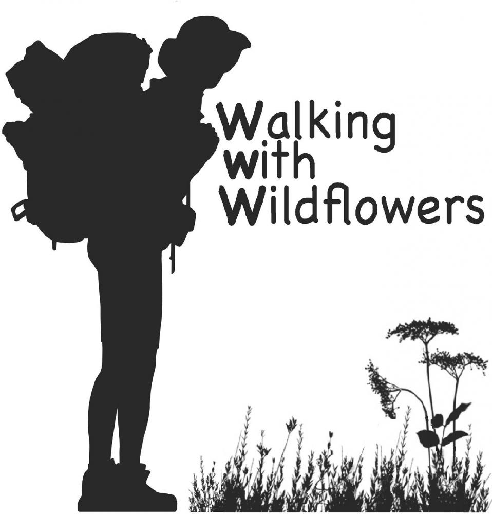 Walking with Wildflowers project logo
