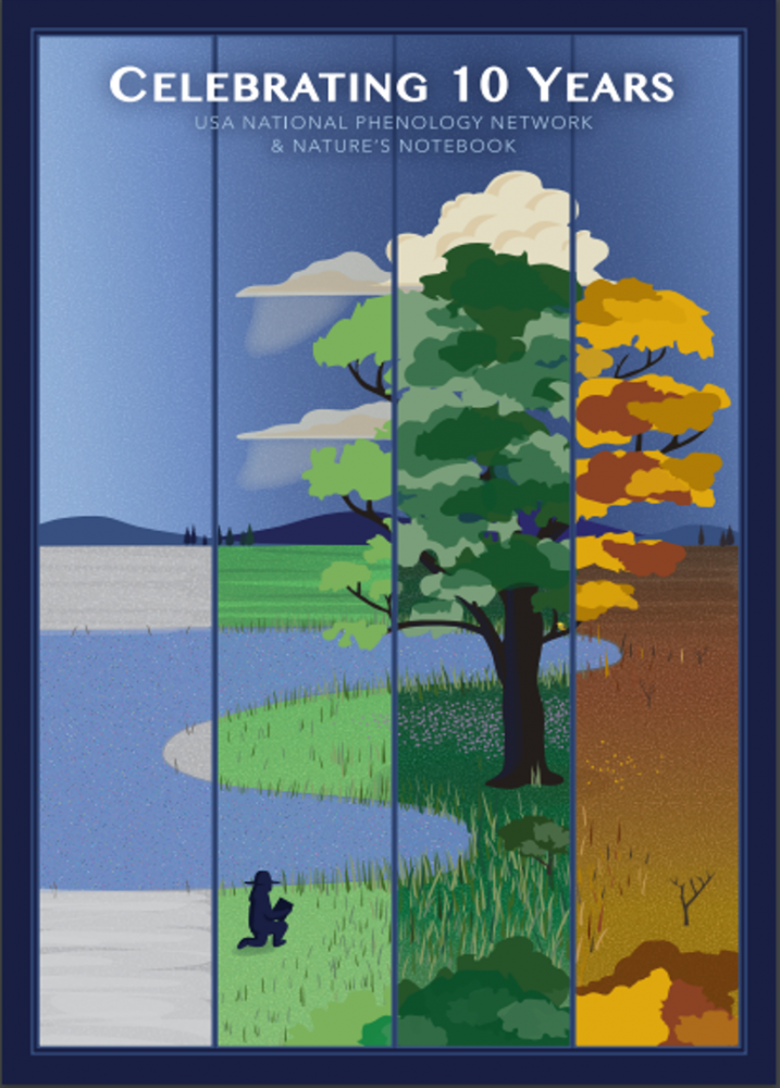 Poster commemorating 10 years of the USA-NPN with a four season panel design