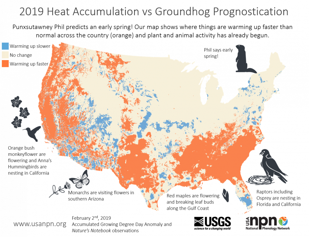 2019 heat accumulation vs groundhog prognostication