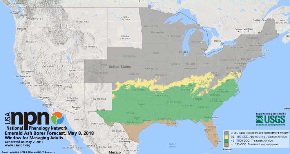 Pheno Forecast map showing where to treat emerald ash borer May 8 2018