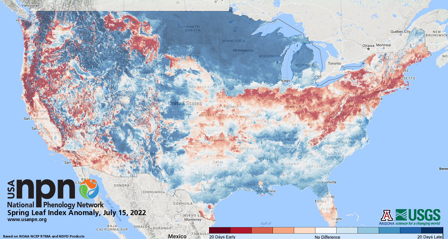 Map showing the spring first leaf index anomaly