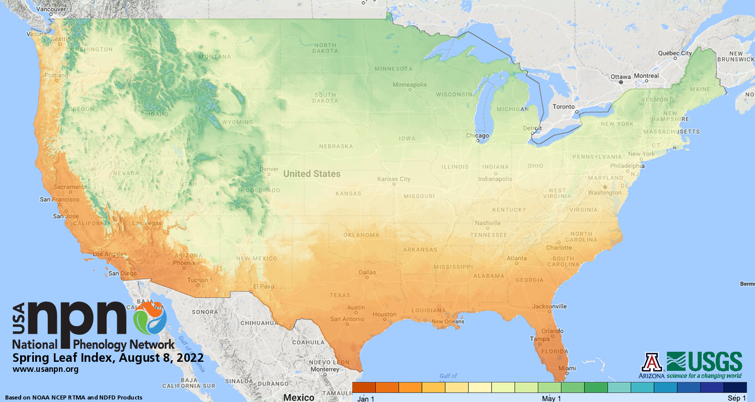 Models and Maps | USA National Phenology Network