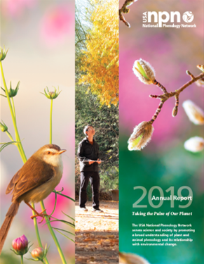 USA-NPN 2019 Annual Report Cover