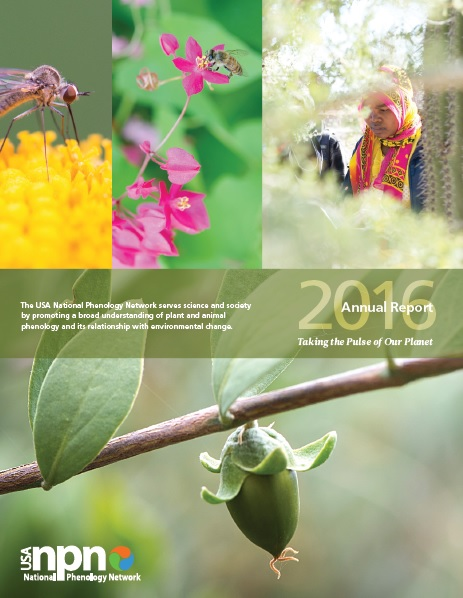 USA-NPN 2016 Annual Report Cover