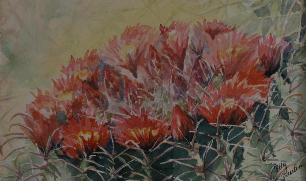 Ferocactus emoryi By Patty Guertin