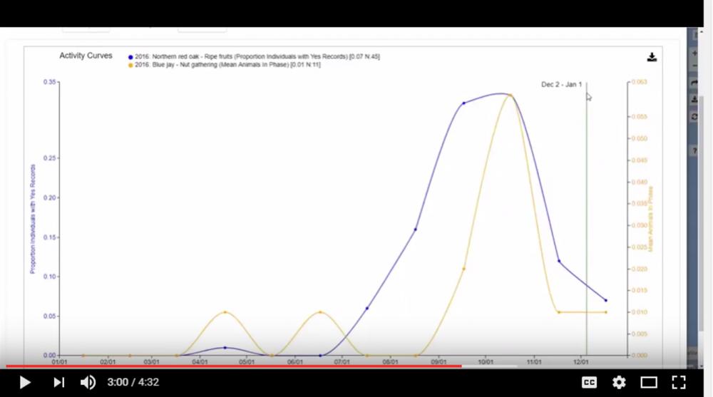 Viz Tool Activity Curves
