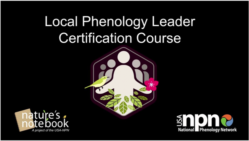 LPL Certification Course Video