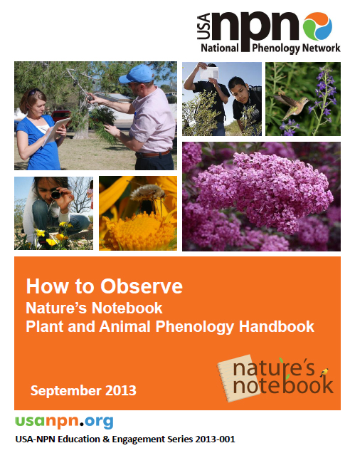 How to Observe Handbook cover image