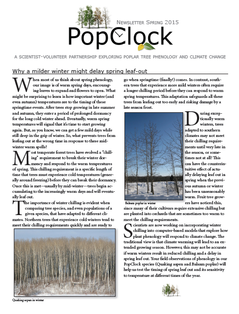 PopClock Spring 2015 Newsletter