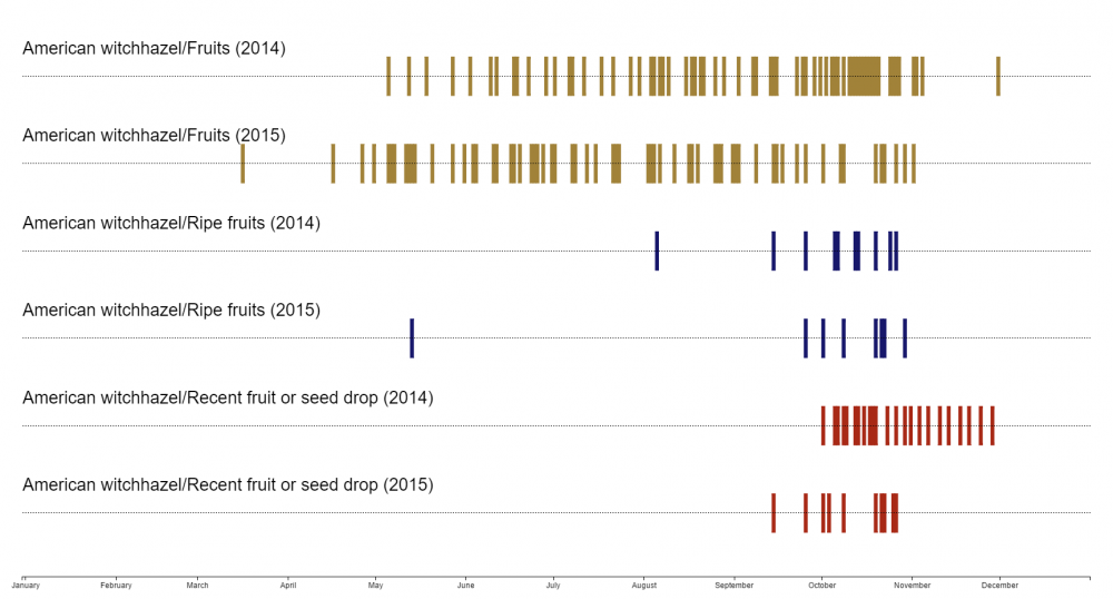 Witchhazel visualization tool calendar (click to enlarge)