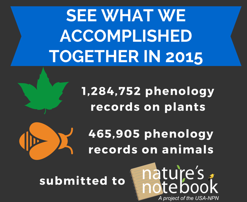 Nature's Notebook tree 1.5 million records
