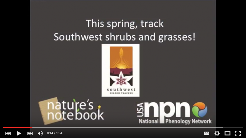 Southwest Season Trackers Campaign video