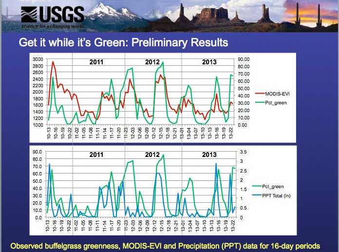 Buffelgrass Monitoring Preliminary Results, Feb. 2014 Wallace, C.