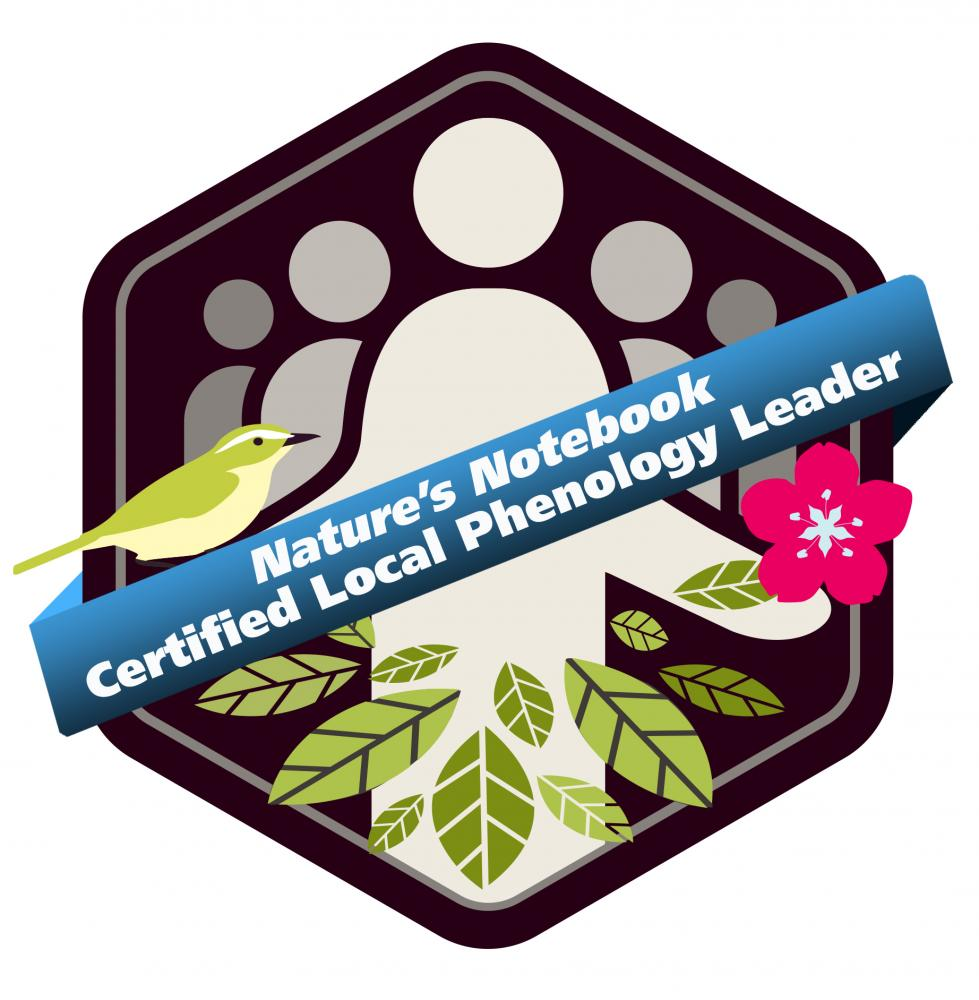 Certified Local Phenology Leader