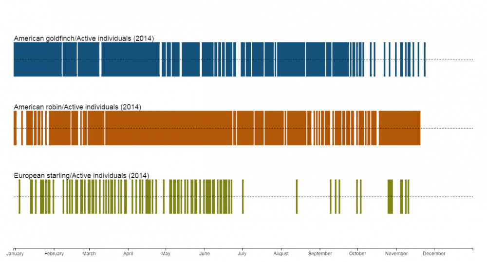 Calendar Visualization